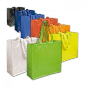 image of PP-12140S  Glossy Food Shopping Bag Size 2