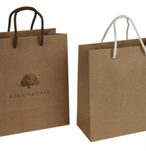image of Brown Kraft Paper Bags with Rope Handles